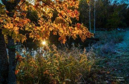 2020-10-20_Trautenfels Teich (35 von 80)