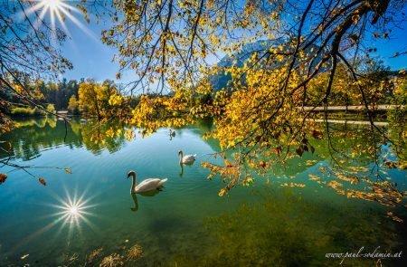 Augenblicke Teich Trautenfels ©Sodamin Paul 1