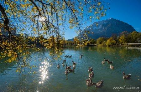 Augenblicke Teich Trautenfels ©Sodamin Paul 10