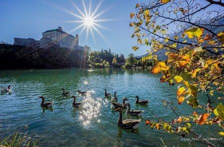 Augenblicke Teich Trautenfels ©Sodamin Paul 8