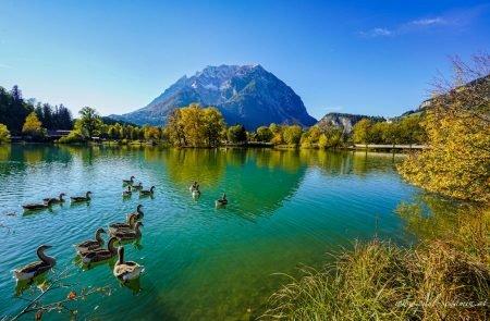Augenblicke Teich Trautenfels ©Sodamin Paul 9