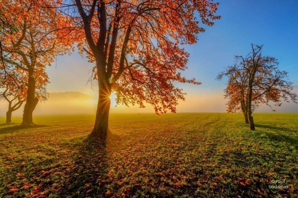 Der Goldene Herbst in einer unglaublichen Farbpracht