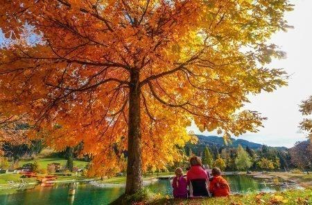 Elena und Valentin Herbst 11
