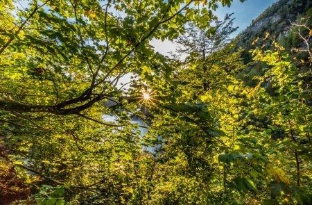 Großer Priel Südgrat, 2515 m 3
