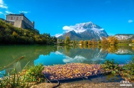 Herbst ©Sodamin (17)
