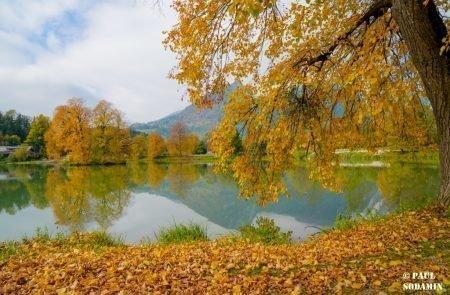 Herbst ©Sodamin (2)