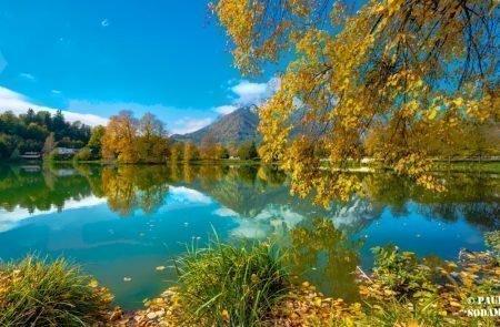 Herbst ©Sodamin (20)