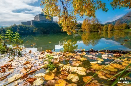 Herbst ©Sodamin (21)