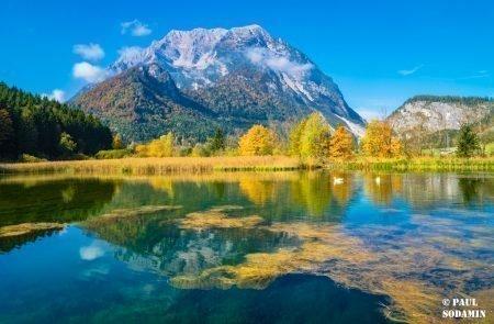 Herbst ©Sodamin (27)