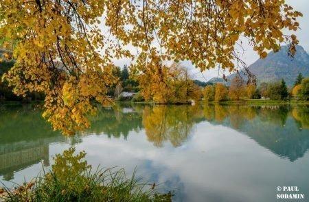Herbst ©Sodamin (3)
