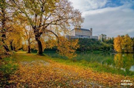 Herbst ©Sodamin (4)