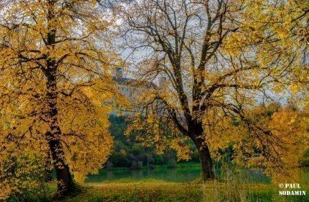 Herbst ©Sodamin (7)