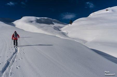 Kitzbuehler Alps (10 von 15)